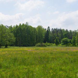 Widok na Łąki Karniowskie